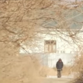 Қызылорда маңындағы қамыс арасынан маугли-бала табылды (видео)