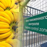АШМ Ресейден келген 19 тонна бананды елге кіргізбеді