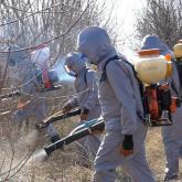 Нұр-Сұлтанда масаларға қарсы дезинсекция жұмыстары екі ауысымда жүріп жатыр