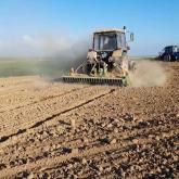 ШҚО-да 1 миллионнан астам гектар жерге егін егіледі