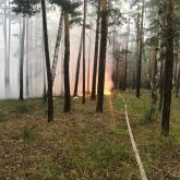 «Бурабай» ұлттық паркінде 3 гектарға жуық орман өртенді