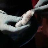 Ақмола облысында 3 азамат героин сақтағаны үшін 10 жылдан 12 жылға дейін бас бостандығынан айырылды
