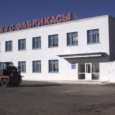 «Келіспейміз»: Арқалықтағы құс фабрикасы министрліктің мәлімдемесін жоққа шығарды