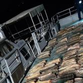 Атырауда 6 центнер қызыл балық аулаған браконьер ұсталды
