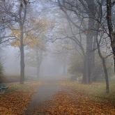 Қазақстанның алты облысында ауа райына байланысты ескерту жарияланды