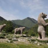 Іле Алатауы ұлттық паркіне «Сергек» камералары орнатылады