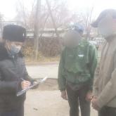 Алматы облысында үй жануарларын азаптап өлтіріп жүргендер ұсталды