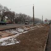 Тоқаев Алматыдағы оталған ағаштарға қатысты кінәлілерді жауапқа тартуды тапсырды