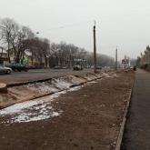 Алматы әкімдігі кесілген ағаштардың орнына 30 емен отырғызады