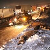 Алматы – Қапшағай тасжолында жаппай жол-көлік апаты болды