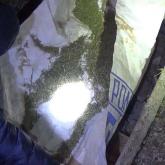 Шу ауданының тұрғынынан 27 келіден астам есірткі тәркіленді