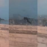 Семейде көпірден секіріп кеткен жасөспірімнің өлімі видеоға түсіп қалған