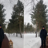 Тоқаев иттермен серуенге шықты - фото