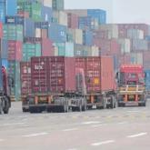 Қытайға ауылшаруалығы өнімдерін экспорттайтын қазақстандық кәсіпорындар саны көбейді