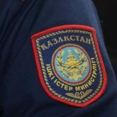 Павлодарда ветеринар болып заңсыз жұмыс істеген өзбекстандық азамат анықталды