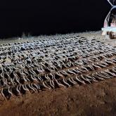 Батыс Қазақстан облысында браконьерлерден 865 киік мүйізі тәркіленді
