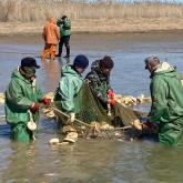 Бекіре-2021: браконьерлерге 3,4 млн теңге айыппұл салынды