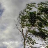 Ауа райы: Қазақстанның бірнеше өңірінде ескерту жарияланды