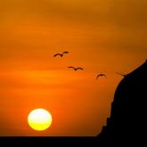 Діни сауатсыздық, санасы уланған азаматтарды қоғамға бейімдеу және псевдосалафилермен жұмыс – теологпен сұхбат
