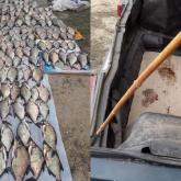 Павлодар облысында браконьерлерден 230 келі балық тәркіленді