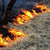 Қызылорда облысындағы шаруа қожалығында 3 мың орам шөп өртеніп кетті