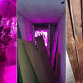 Алматылық тұрғын көпқабатты үйдің жертөлесінде марихуана өсірген