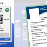 Оралда вакциналау паспортын сатқан медицина қызметкері ұсталды