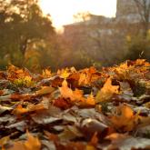 Қазақстанда алдағы үш күнде күн райы жылы болады