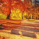 Алдағы демалыс күндері ауа райы жылы болады — «Қазгидромет»