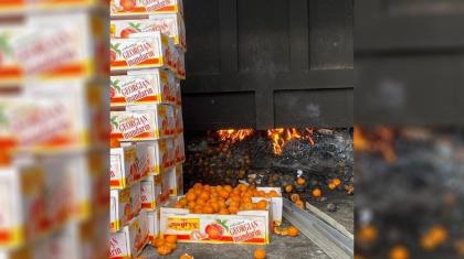 Нұр-Сұлтанда бір тоннадан астам қауіпті мандарин өртелді