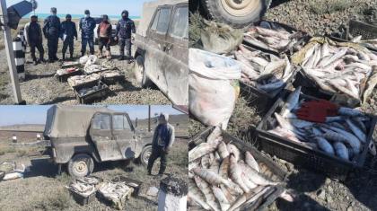 Қарағандыда 200 келіге жуық балықты заңсыз ауланған браконьерлер ұсталды